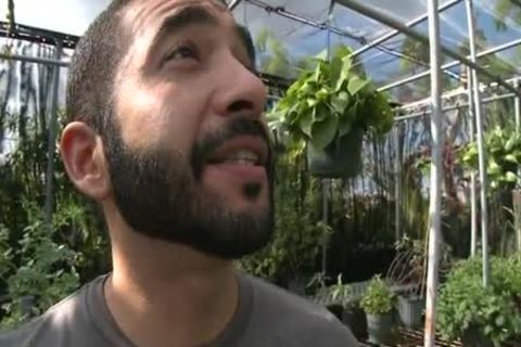 Bearded Hunk Enjoys pecker In A Greenhouse HD