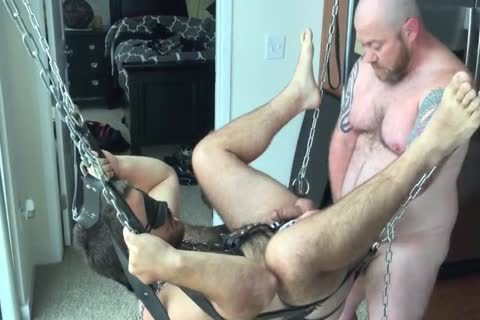 Breaking In The new Sling Stand In The new Apartment, Blindfolding And Lightly thrashing Wolfy In His Harness previous to Using Papa's penis, Fingers, And A gigantic dildo On Him.
