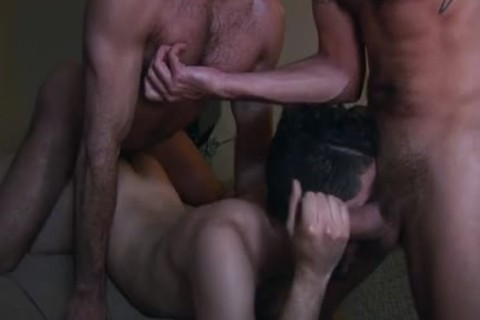 hot shaggy males plowing bare