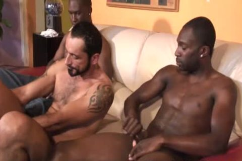 Bearded muscular White gay dude gets Nailed By black Thugs