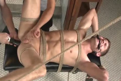 gay bdsm hd