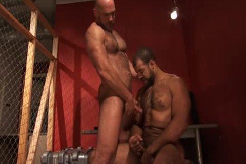 A bushy Hung darksome Skinned Bear acquires came From A Great Member And butthole bunch sex Action