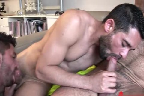 Latin Bear 3some With ejaculation