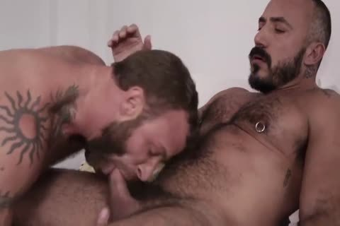 bushy males horny plow SESSION