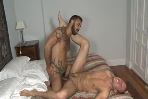 European Bear oral enjoyment And ejaculation