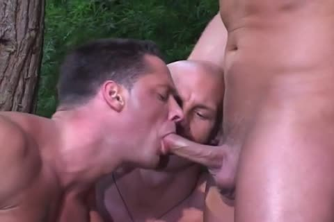 Blowjobs In The Forrest