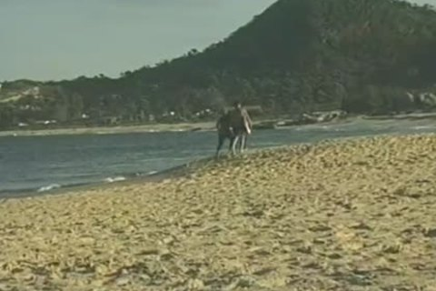 Beach Side males engulfing cock And fucking
