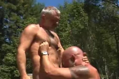 homo Bear Muscle men painfully Outdoor
