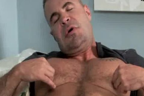 perfect Daddy Bear