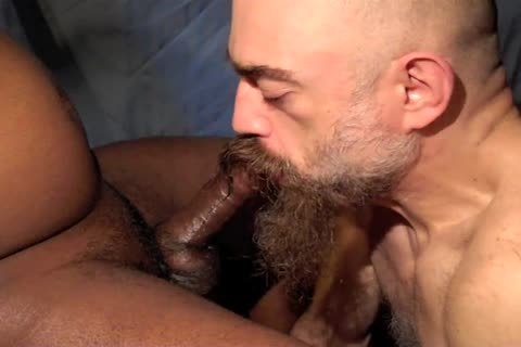 This Xtuber Has Been Trying To acquire In My face hole For Ages, And finally We Managed To Find A Time That Worked. I Loved The Way His orgasm Came Over Him Gradually?that guy Wasn?t truly Shooting Until That First gigantic moan.