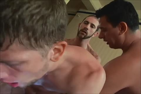 Bull-hung males banging fine Holes. Part XIV