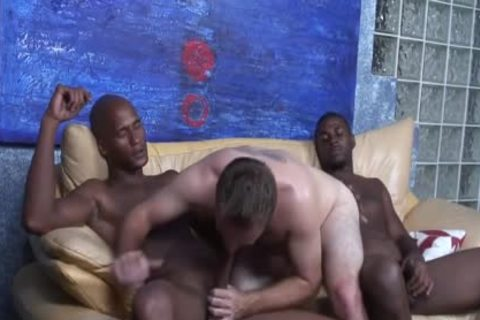 black studs Sharing The ass Of A White lad