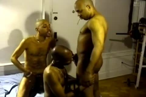 darksome And In The Ghetto gays engulf Hard weenies