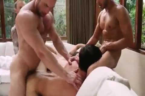 Breed That wazoo - bare bunch-sex 5
