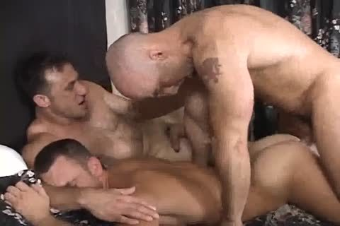 stunning gay three-some engulfing & pounding