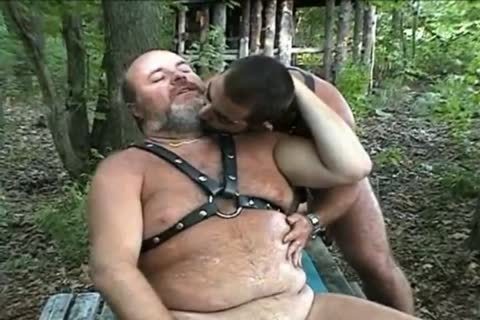 large Bear fucking In The Woods