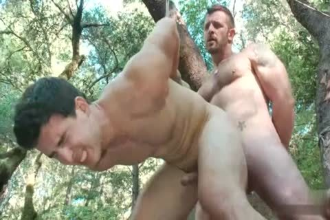 deep In The Woods - Scene 4