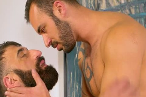 Bearded hairy Muscle Bear blows Some Tool blows Some Bum For A pretty Facial