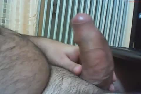 gigantic Uncut Bear dick