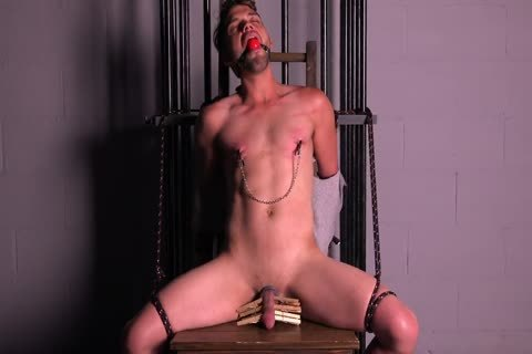 Straight Muscle lad Tortured & Edged