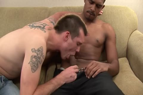 Breeding Is Fundimental Scene 1 Factory video