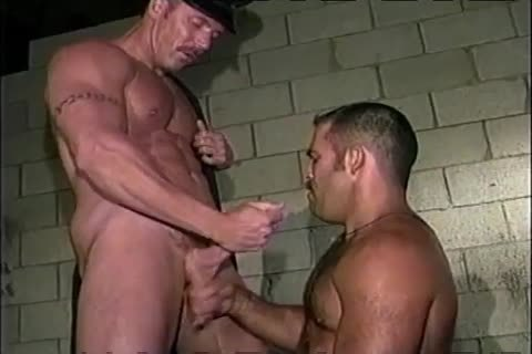 Hung And hirsute - Scene 2