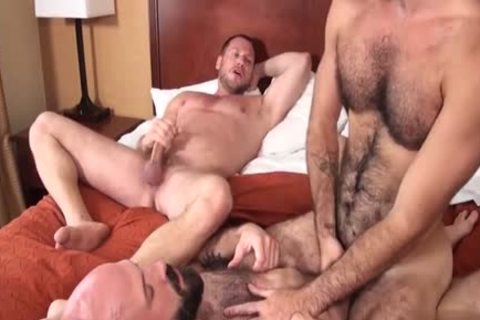 bushy Bear trio And Creampie