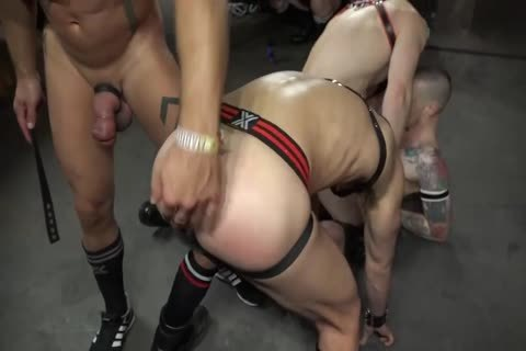 Pup Play & Live Performance