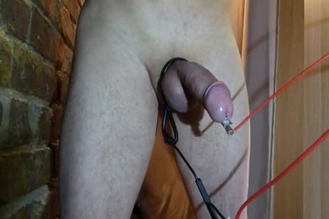 Part.two Electro rod Rosebud anal Glans sperm No Hands