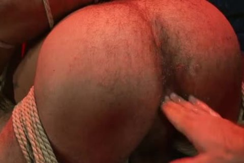 gorgeous homosexual bound And anal ejaculation