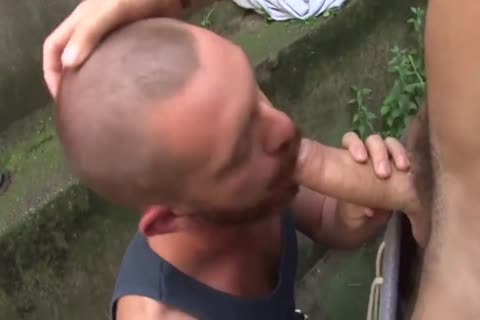 excellent gay clip With Muscle, oral stimulation-sex Scenes