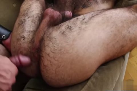 hairy homosexual 3some And semen flow