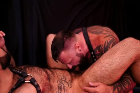 Marc Angelo, Atlas Grant In Order And Drive