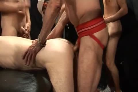 London cum Pigs 2