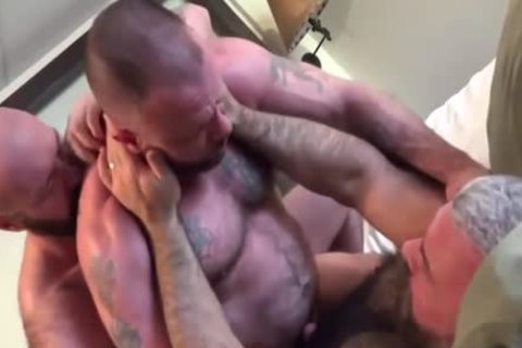 Three meaty Bears banging anal