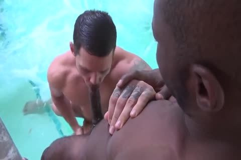 Troy Takes Tate Poolside