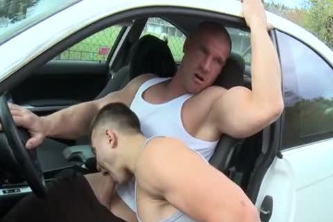 Gay car sex