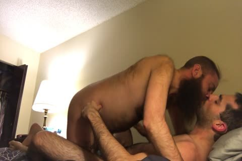 hirsute long Bearded Otter Kisses And engulf His hirsute bf
