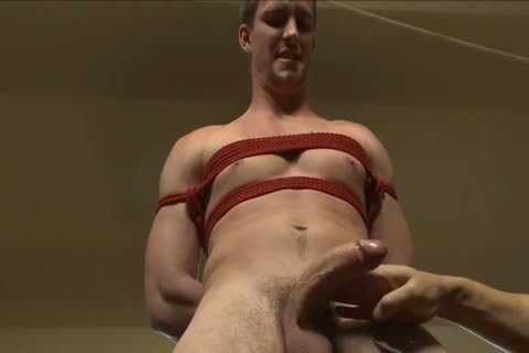Bryan's at no time Been Edged In bondage