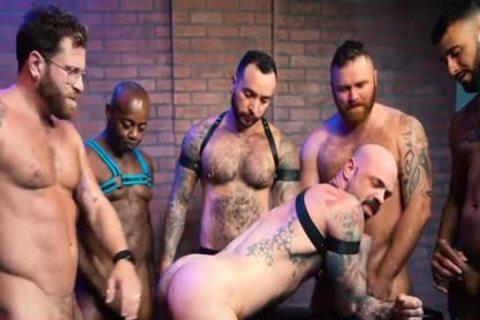 Pig Week orgy 2019 Part two